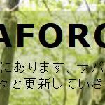 DELTA FORCE沼津(デルタフォース沼津)